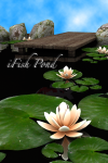 iFish Pond splash screen