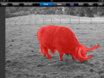 """""""Red Dot"""" button tool shows colourised areas in a red shade."""
