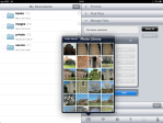 Select photos in Manage Files.