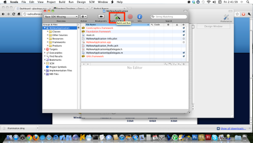 Xcode opens, click Build and Run button.